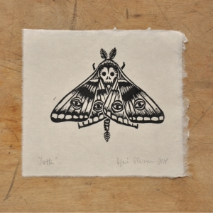 Moth20x20_120dpi