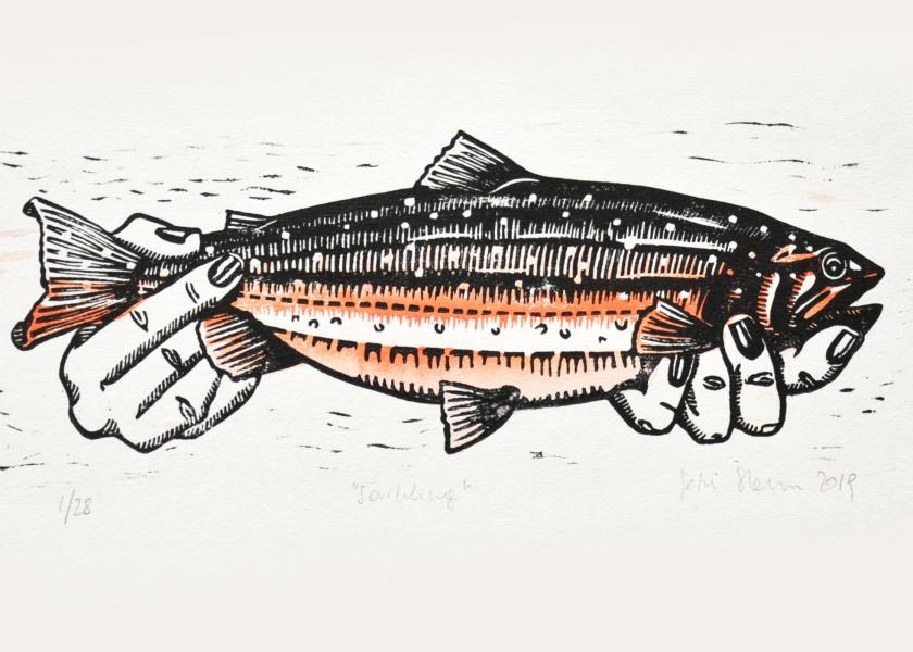Fische Halten_main